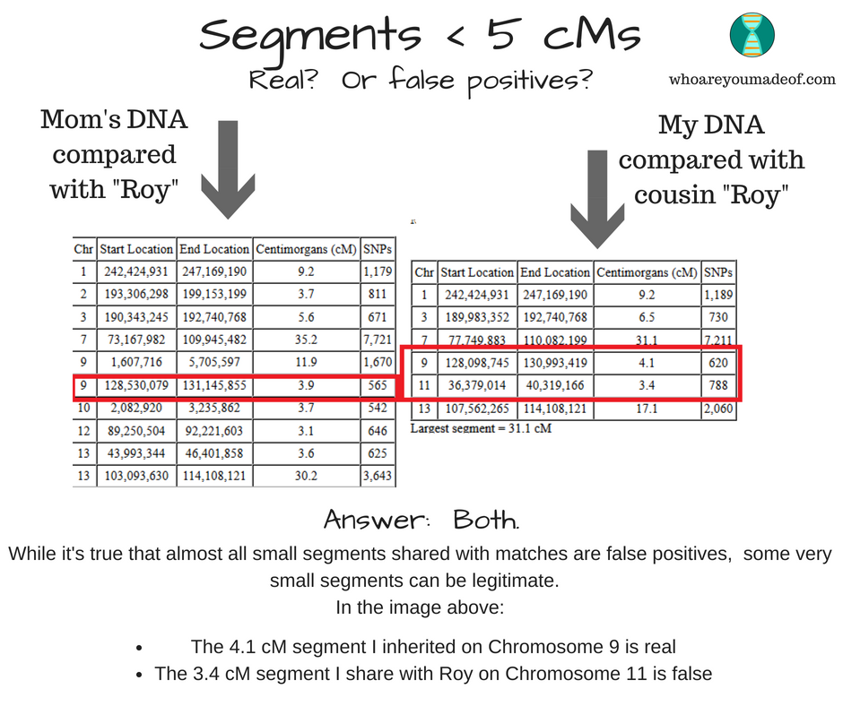 Very small legitimate and false positive DNA segments