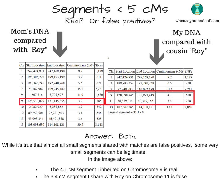 Very small legitimate and false positive DNA segments