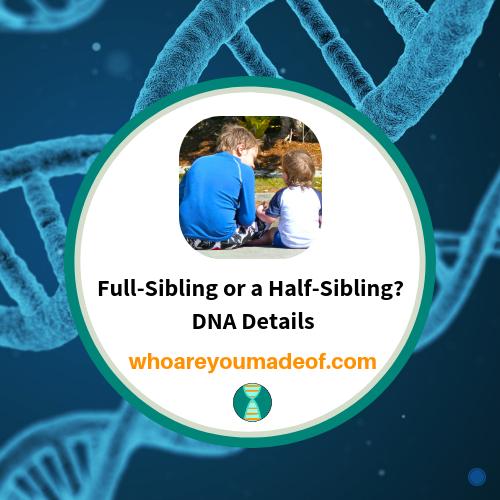 Full-Sibling or a Half-Sibling?  DNA Details