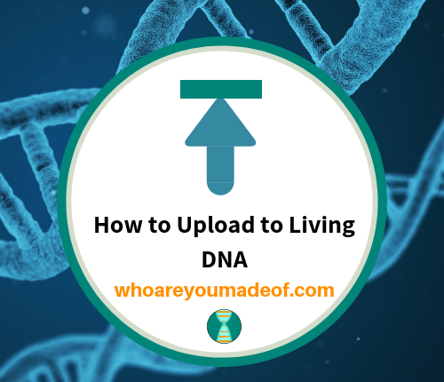 How to Upload to Living DNA