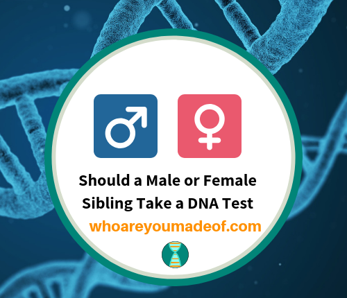 Should a Male or Female Sibling Take a DNA Test