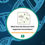 What Does No Shared X DNA Segments Found Mean_
