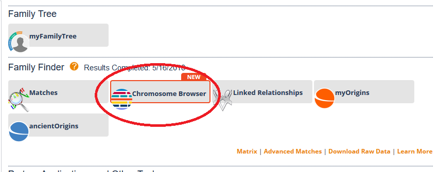 How to access the chromosome browser on FTDNA