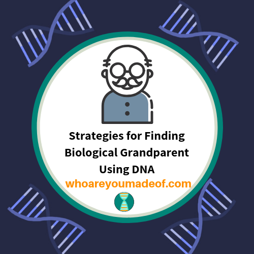 Strategies for Finding Biological Grandparent Using DNA