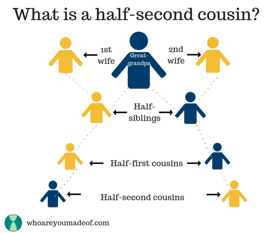 A chart explaining half-second cousins.