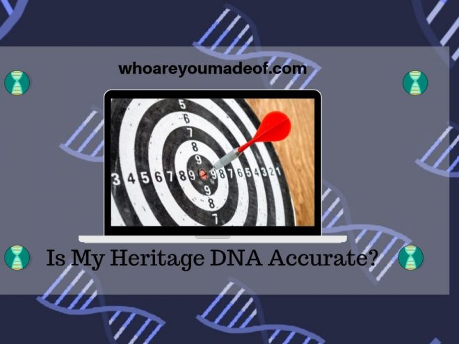Is My Heritage DNA Accurate_
