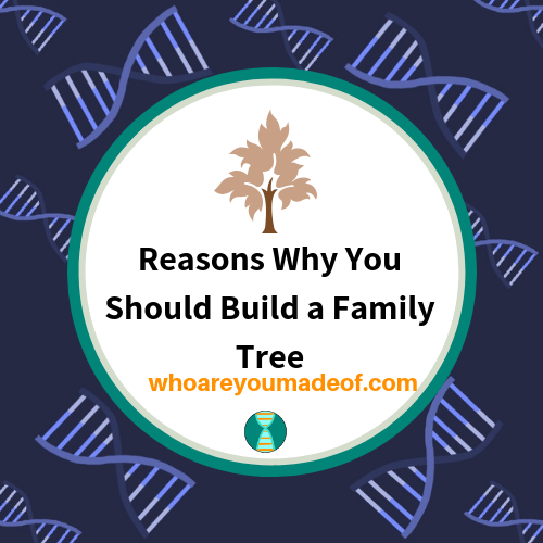 Reasons Why You Should Build a Family Tree