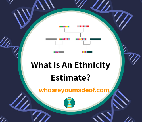 What is An Ethnicity Estimate_