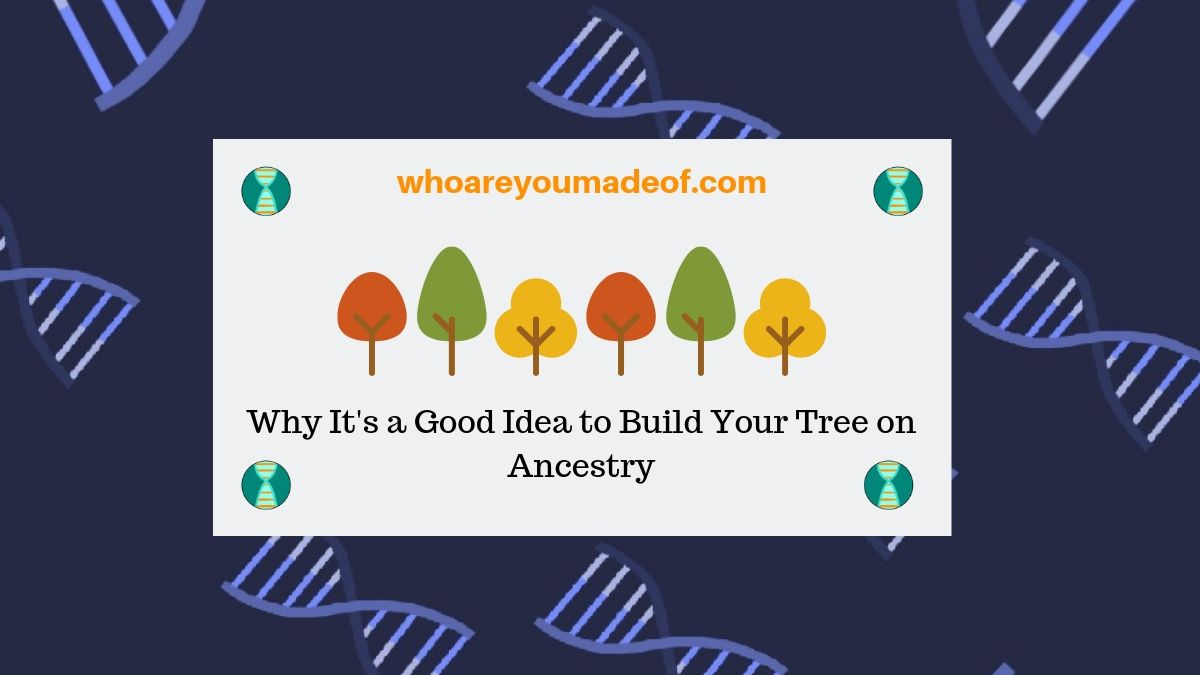 Why It's a Good Idea to Build Your Tree on Ancestry