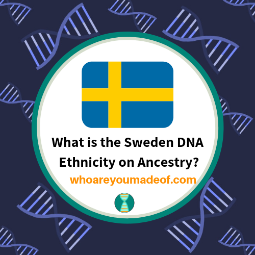 What is the Sweden DNA Ethnicity on Ancestry?