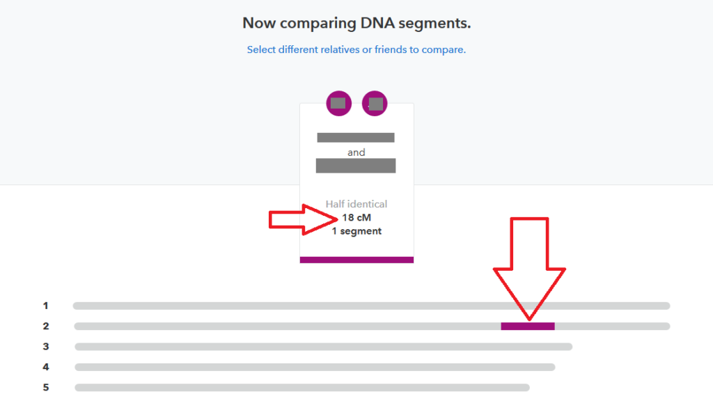 example of how to use 23andme chromosome browser