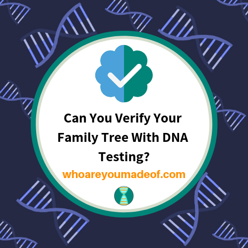 Can You Verify Your Family Tree With DNA Testing?