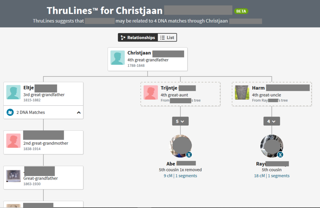 How to use Ancestry DNA ThruLines