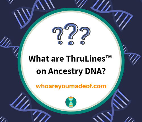 What are ThruLines™ on Ancestry DNA_