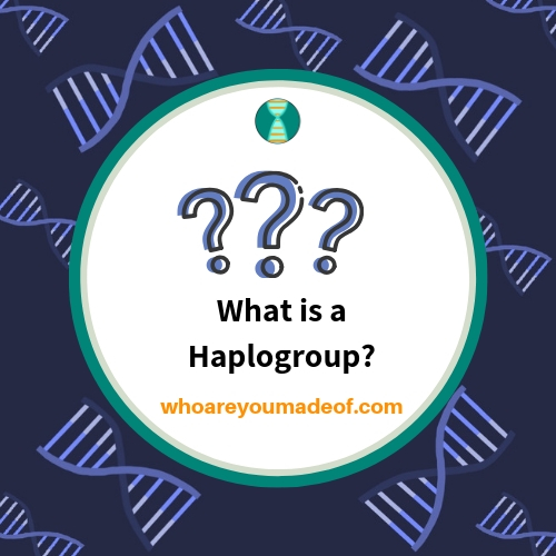 What is a Haplogroup?