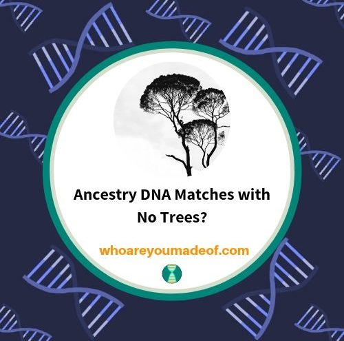 Ancestry DNA Matches with No Trees_