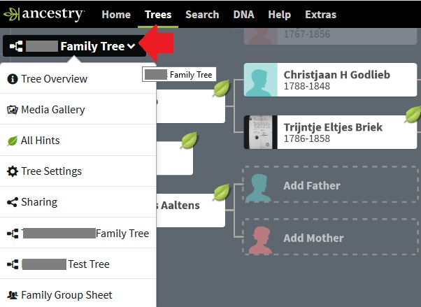 How to access family tree settings on ancestry, screenshot of the drop down menu from my family tree where Tree Settings can be seen as the fourth menu option
