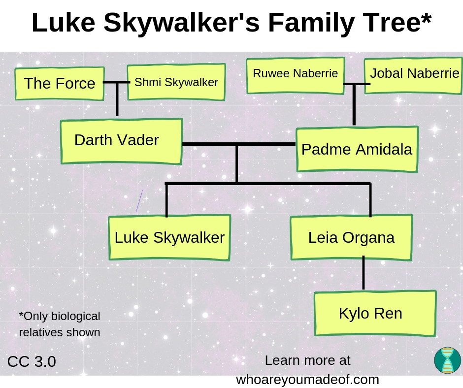 This is the Star Wars Genealogy Tree chart that shows the ancestors and descendants of Darth Vader and Padme Amidala