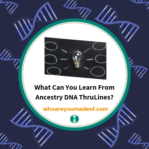 What Can You Learn From Ancestry DNA ThruLines?