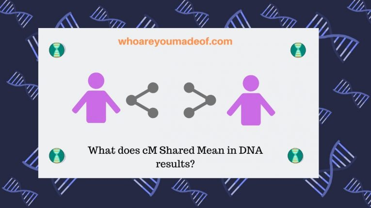 What does cM Shared Mean in DNA results_