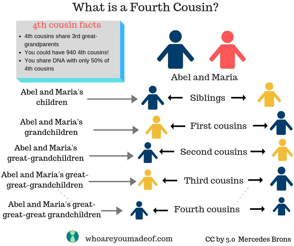 "A chart depicting the answer to ""what is a fourth cousin?""  This is includes an example of a fourth cousin"