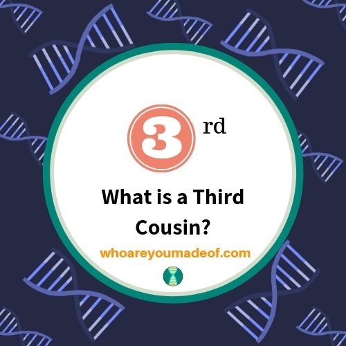 What is a Third Cousin?