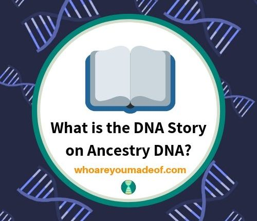 What is the DNA Story on Ancestry DNA_