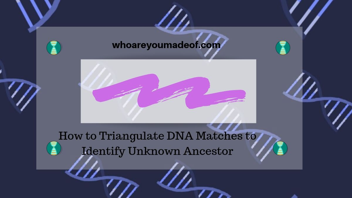 How to Triangulate DNA Matches to Identify Unknown Ancestor