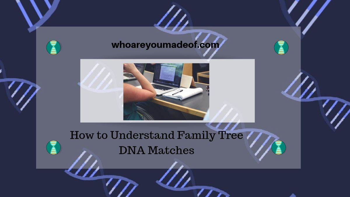 How to Understand Family Tree DNA Matches