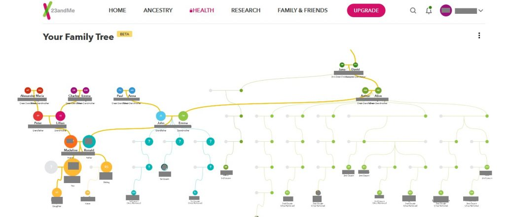 example of family tree feature on 23andme