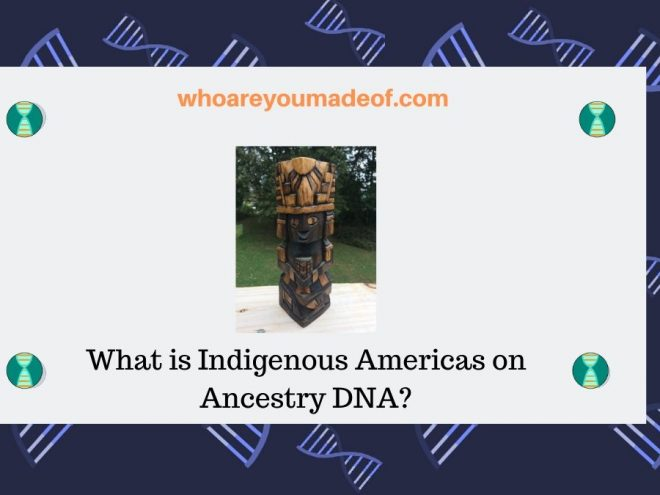 What is Indigenous Americas on Ancestry DNA_