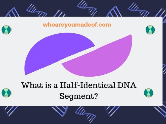 What is a Half-Identical DNA Segment_