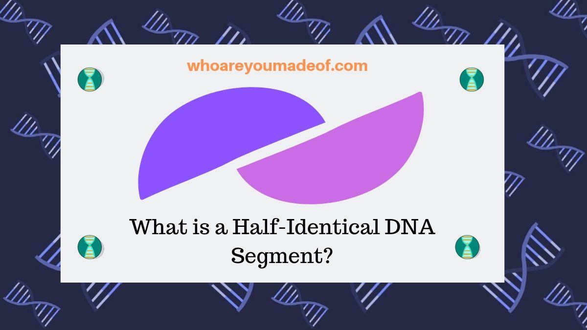 What is a Half-Identical DNA Segment?