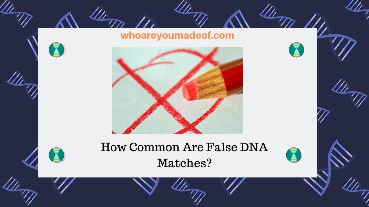 How Common Are False DNA Matches?