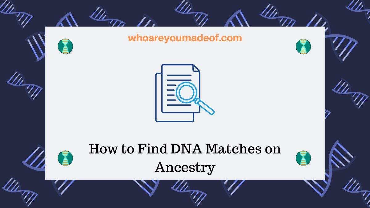 How to Find DNA Matches on Ancestry