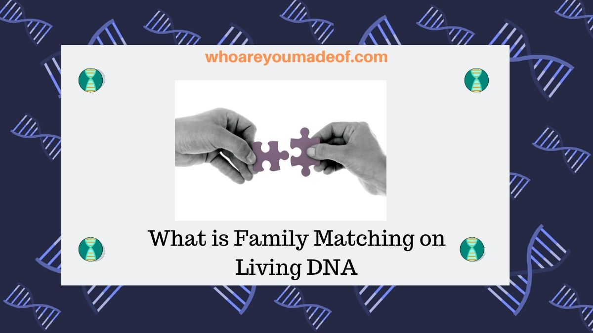 What is Family Matching on Living DNA
