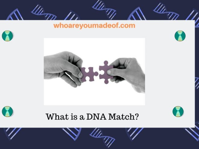 What is a DNA Match_