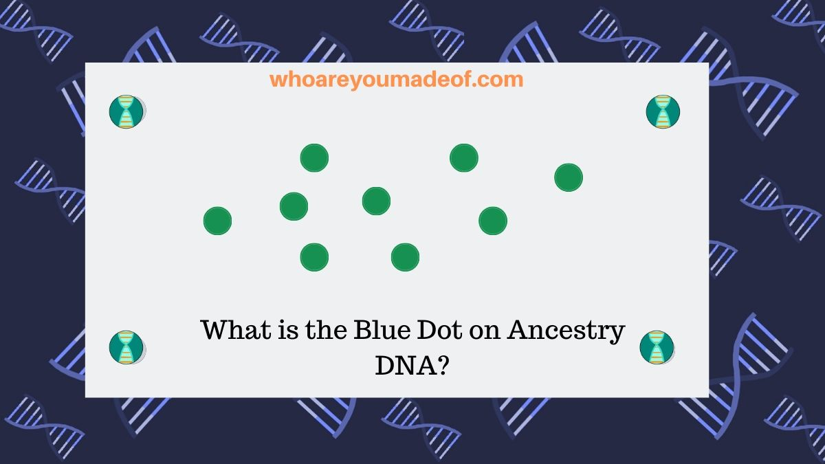 What is the Blue Dot on Ancestry DNA?