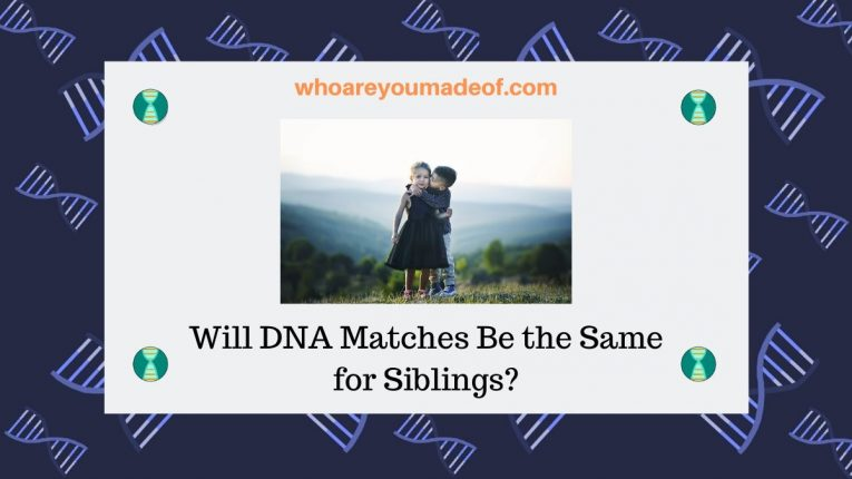 Will DNA Matches Be the Same for Siblings_