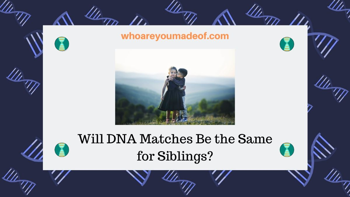 Will DNA Matches Be the Same for Siblings?