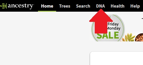 how to find dna matches on ancestry dna