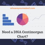 Need a DNA Centimorgan Chart_