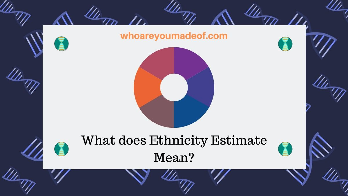 What does Ethnicity Estimate Mean?