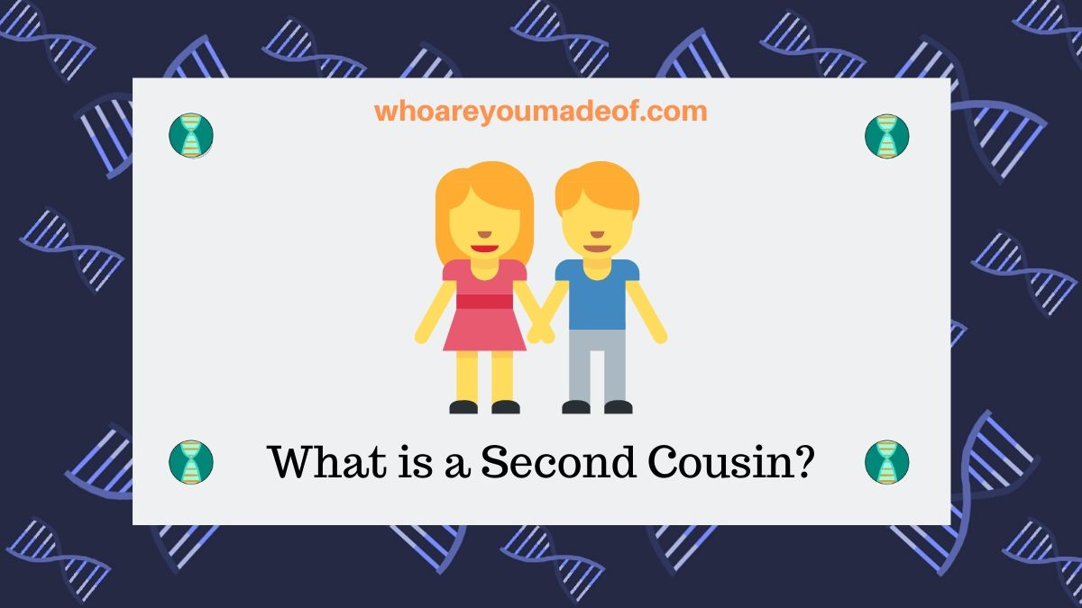 What is a Second Cousin?