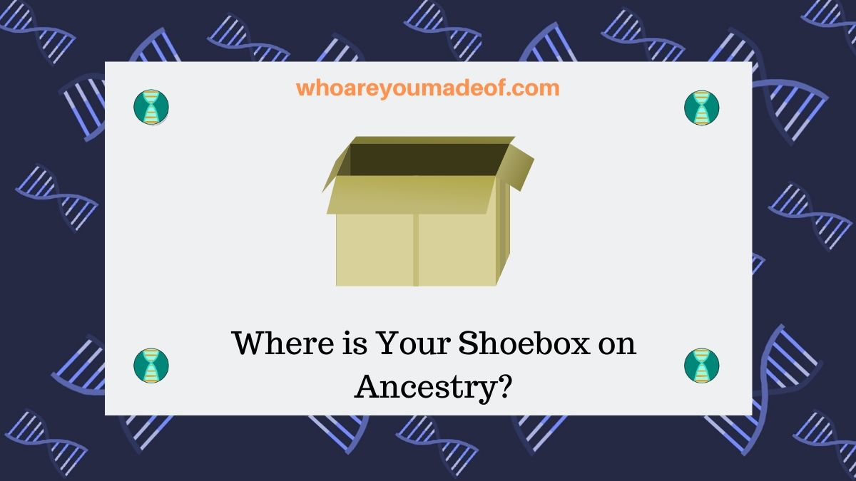 Where is Your Shoebox on Ancestry?