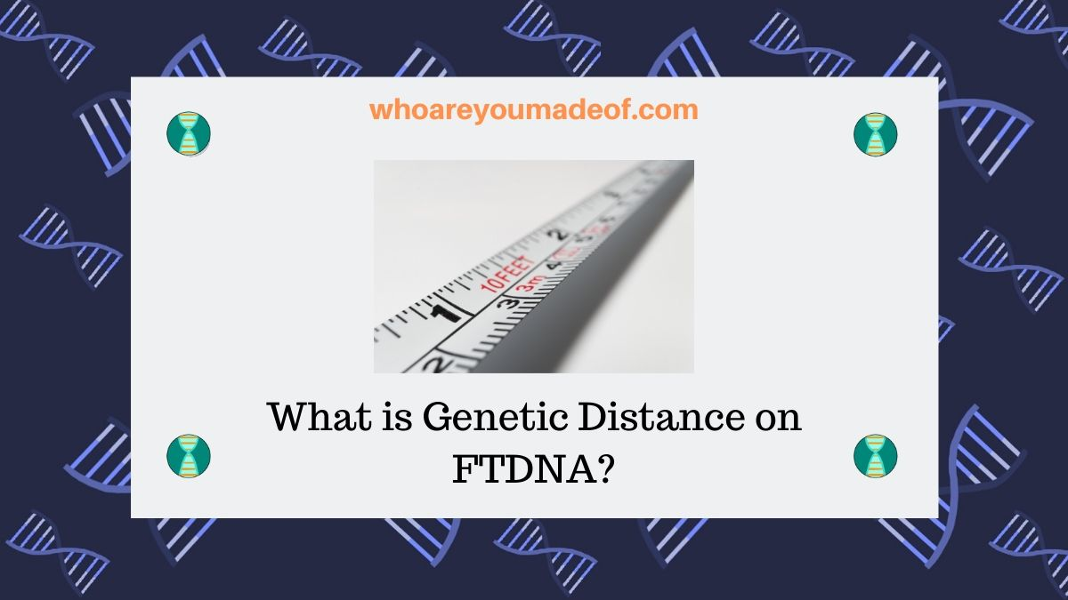 What is Genetic Distance on FTDNA?