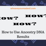 How to Use Ancestry DNA Results