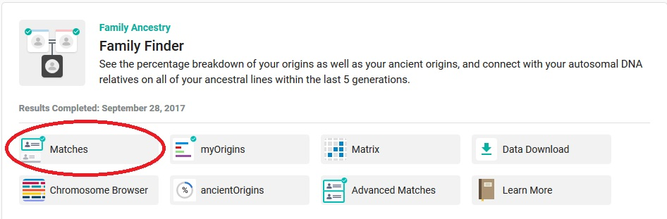 "Click on ""Matches"" - the first option under the Family Finder heading - to access your DNA matches"