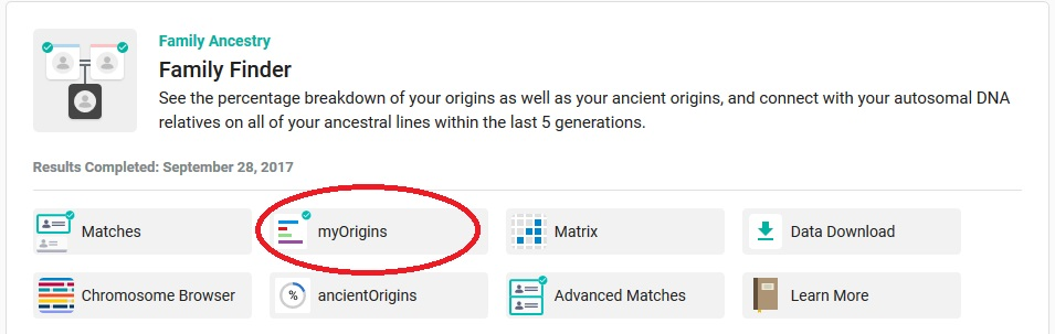 The myOrigins tab is circled - this is how to access your Family Tree DNA ethnicity estimate