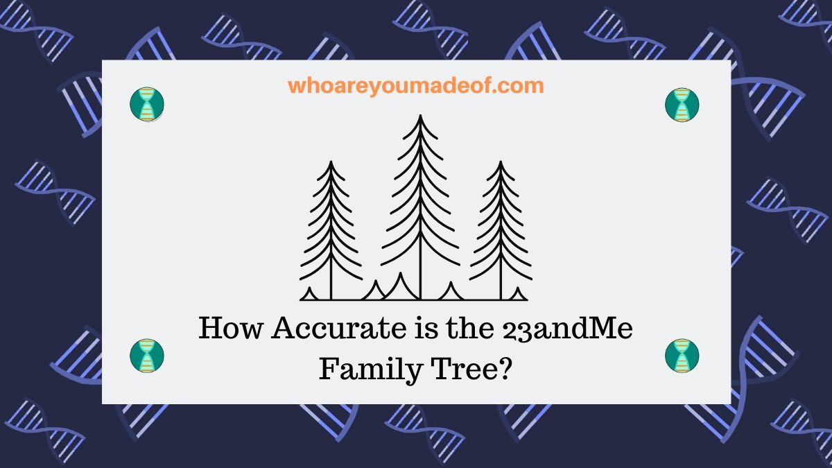 How Accurate is the 23andMe Family Tree?